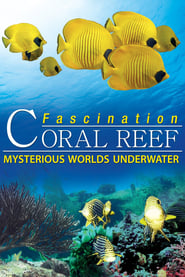 Fascination Coral Reef: Mysterious Worlds Underwater (2012) Online Lektor CDA Zalukaj