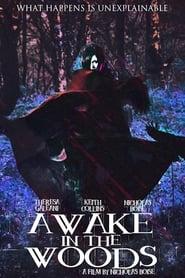 مشاهدة فيلم Awake In The Woods 2015 مترجم أون لاين بجودة عالية