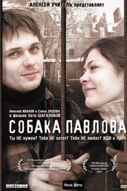 Собака Павлова (2005) Zalukaj Online Cały Film Lektor PL