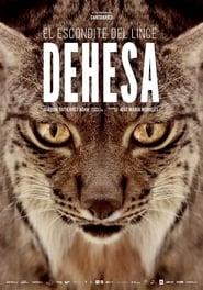 Dehesa, el bosque del lince ibérico (2020)