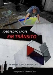 Em Trânsito: José Pedro Croft 2011