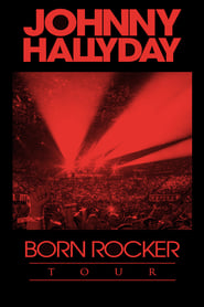 Johnny Hallyday - Born Rocker Tour 2013