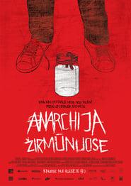 Anarchija Žirmunuose