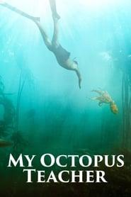 Poster My Octopus Teacher 2020