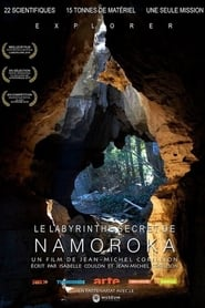 Le Labyrinthe secret de Namoroka