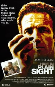 Poster Hide in Plain Sight 1980