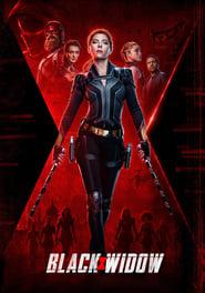 Poster Black Widow 2020