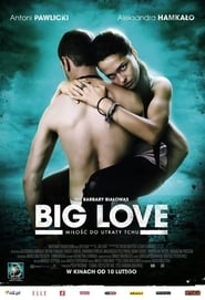 Assitir Filme Big Love Filme Completo Online Legendado Hd Portugues Filme
