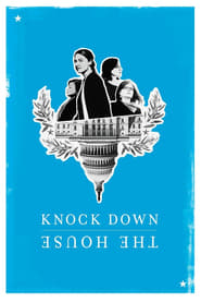 Knock Down the House (2019) Dual Audio [Hindi 5.1 + English 5.1] 720p WEBRip ESubs x264 Download