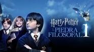 Harry Potter à l'école des sorciers images