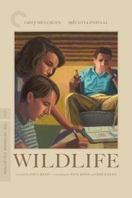 Poster for Wildlife