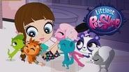 Littlest Pet Shop: Petits Animaux, Grandes Aventures en streaming