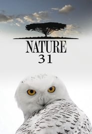 Nature: Season 31