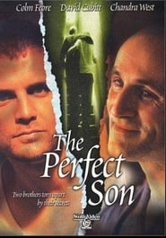 The Perfect Son 2000