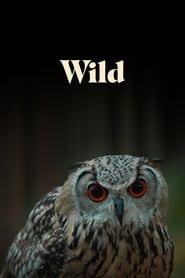Wild (2019)