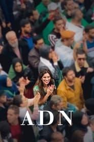ADN 2020