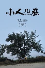 Mr. Zhang (2021) torrent