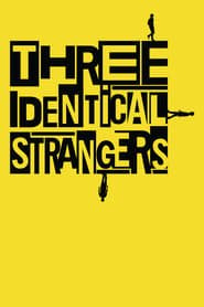 Poster Three Identical Strangers 2018