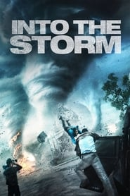 Poster Into the Storm 2014