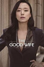 Poster The Good Wife 2016