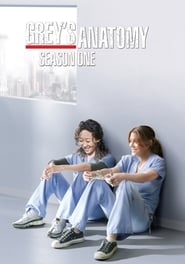 Grey's Anatomy - Season 1 : Season 1