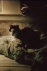 My Cat, My Garden, and 9/11 movie