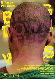Bring Down The Walls (2020)