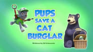 Pups Save a Cat Burglar
