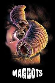 Maggots [2019]