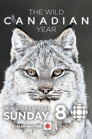 The Wild Canadian Year 2017
