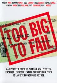 Too Big to Fail 2011