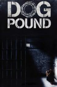 Poster Dog Pound 2010