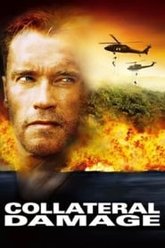 Collateral Damage Netflix HD 1080p