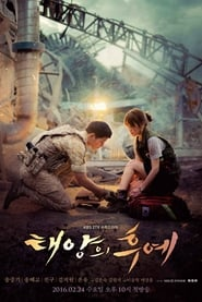 Descendants of the Sun en streaming