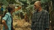 Hierro 1x4