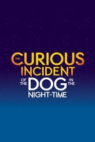 The Curious Incident of the Dog in the Night-Time (2021)