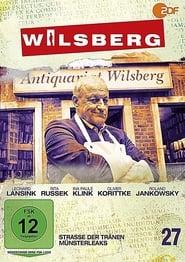 Poster Wilsberg 2020