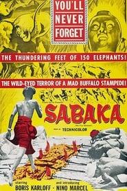 Poster Sabaka 1955
