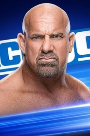 WWE SmackDown Live saison 22 episode 13 streaming vostfr