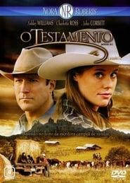 Nora Roberts' Montana Sky (2007)