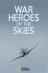War Heroes of the Skies 2013