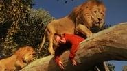 Roar images