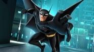 Prenez garde à Batman en streaming