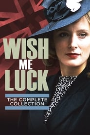 Poster Wish Me Luck 1990