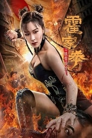 The Queen of Kung Fu poster