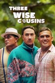 Three Wise Cousins (2016)