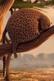 Rollin' Safari 2012