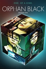Orphan Black 2º Temporada (2014) Blu-Ray 720p Download Torrent Dub e Leg