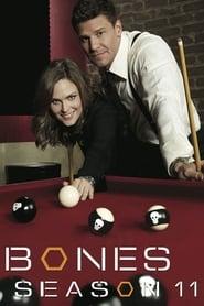 Watch Bones Season 11 Online Free on Watch32