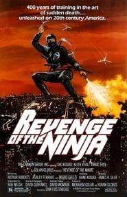 Ninja II Ultime Menace en streaming